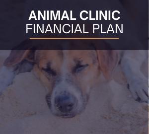 Animal Clinic Financial Plan